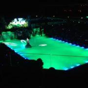 Popelka na ledě